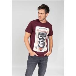 Vêtements Homme T-shirts manches courtes Deeluxe T-Shirt CLEM Plum