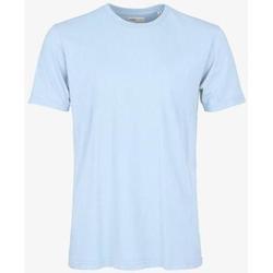 Vêtements T-shirts manches courtes Colorful Standard T-shirt  Polar Blue bleu pâle