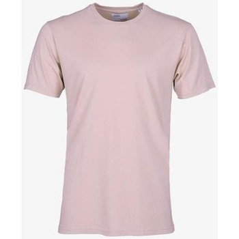 Vêtements T-shirts manches courtes Colorful Standard T-shirt  Faded Pink rose pale