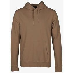 Vêtements Sweats Colorful Standard Sweatshirt à capuche  Sahara Camel marron clair