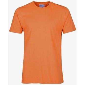Vêtements T-shirts manches courtes Colorful Standard T-shirt  Burned Orange orange
