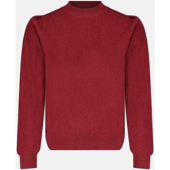 Vêtements Femme Pulls Deeluxe Pull BARBARA Red Brown