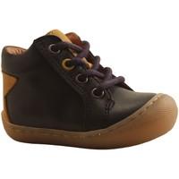 Chaussures Garçon Baskets montantes Bellamy DAC BLEU MARINE
