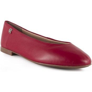 Chaussures Femme Ballerines / babies Chamby  Rouge