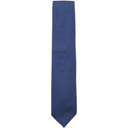 Vêtements Homme Cravates et accessoires Church's  Bleu