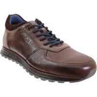 Chaussures Homme Baskets basses Bugatti 331-a0205 Marron cuir