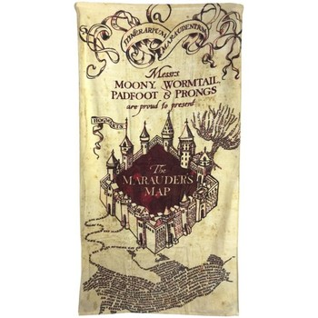 Maison & Déco Serviettes de plage Harry Potter Taille unique Crème