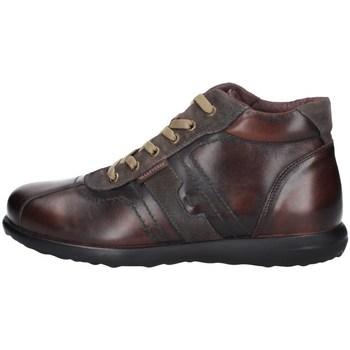 Chaussures Homme Baskets montantes Valleverde 49802 MARRON