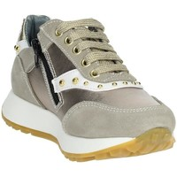 Chaussures Fille Baskets basses 4Us Paciotti 4U-011 Beige/Or