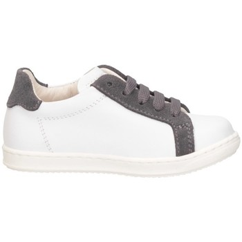 Chaussures Garçon Baskets basses Gioiecologiche 5131 BAINCO / GRIS