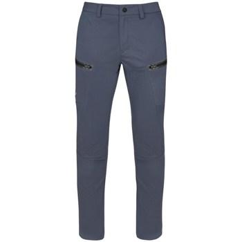 Vêtements Homme Pantalons cargo Salewa Fanes WO Dst Gris