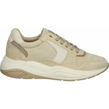 Chaussures Femme Baskets basses Scapa Sneaker Beige