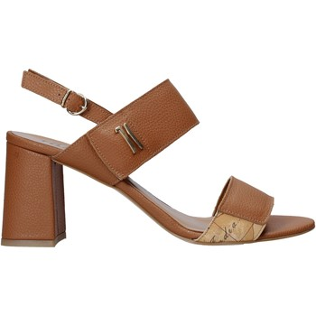 Chaussures Femme Sandales et Nu-pieds Alviero Martini E124 587A Marron