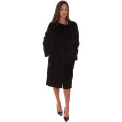 Vêtements Femme Vestes Fracomina F321WC4001O41201 Noir