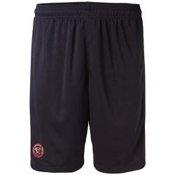 Vêtements Homme Shorts / Bermudas Kappa AHORA PRO 4 UBB RUGBY Bleu
