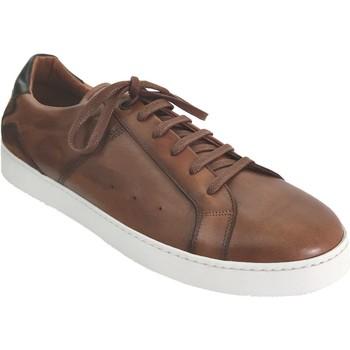 Chaussures Homme Baskets basses Le Formier Alex Marron cuir