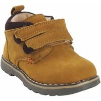 Chaussures Garçon Boots Bubble Bobble a2635 grillé Marron