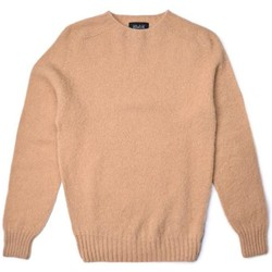 Vêtements Homme Pulls Howlin Pull Birth of the Cool Homme Beige Beige