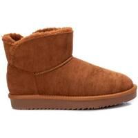Chaussures Femme Bottines Xti 04443604 marron