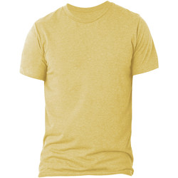 Vêtements Homme Polos manches courtes Bella + Canvas CA3413 Pêche