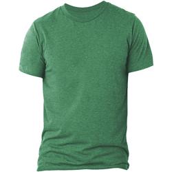 Vêtements Homme T-shirts manches courtes Bella + Canvas CA3413 Vert