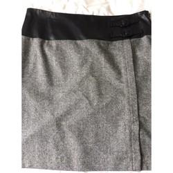 Vêtements Femme Jupes Antonelle Jupe gris chiné Gris