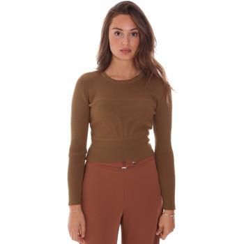 Vêtements Femme Pulls Fracomina F321WT7017K48201 Marron