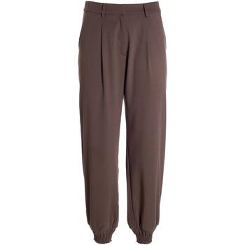 Vêtements Femme Pantalons fluides / Sarouels Fracomina F321WV4002W45901 Marron