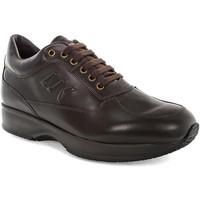 Chaussures Homme Baskets basses Lumberjack SM01305 010 B01 Marron