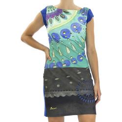 Vêtements Femme Robes courtes Desigual 51V20D7 Bleu