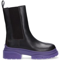 Chaussures Femme Boots Ash Beatles Storm nero viola Noir
