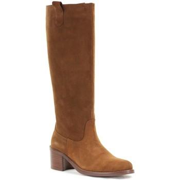 Chaussures Femme Bottes Patricia Miller 5150 Camel