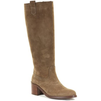 Chaussures Femme Bottes Patricia Miller 5150 Taupe