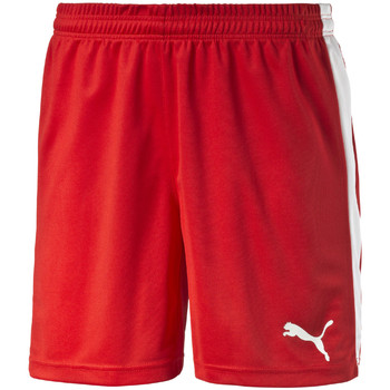 Vêtements Homme Shorts / Bermudas Puma Pitch Shorts Without Innerbrief Rouge