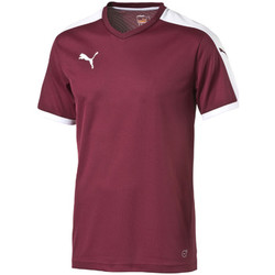 Vêtements T-shirts manches courtes Puma Pitch Shortsleeved Shirt Multicolore