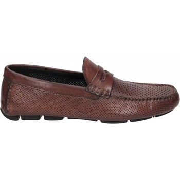 Chaussures Homme Mocassins Brecos OXFORD Marron