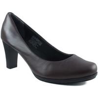 Chaussures Femme Escarpins Rockport Chaussures  pompe supplémentaire pépère femme vivant BRUN