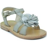 Chaussures Fille Sandales et Nu-pieds Oca Loca OCA LOCA VALENCIA AD FLOR GRIS