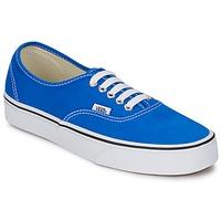 Chaussures Baskets basses Vans AUTHENTIC Bleu / Blanc