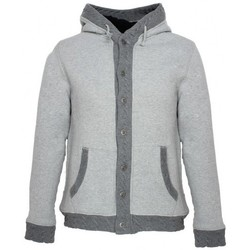 Vêtements Homme Sweats Japan Rags Sweat à capuche  Stanfur Gris 35