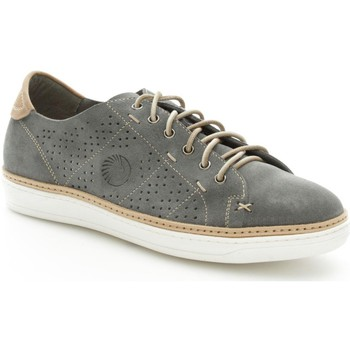 Chaussures Homme Baskets basses Lion 20782 Basket Homme Gris