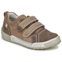 Chaussures Garçon Baskets basses Garvalin BRONX Marron / Beige