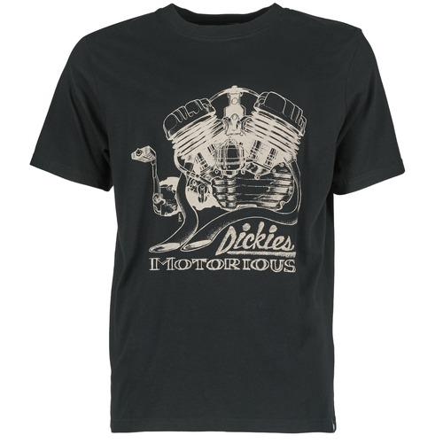 Vêtements Homme T-shirts manches courtes Dickies BRIDGEVILLE Noir