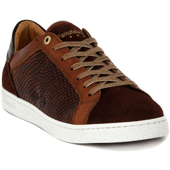 Chaussures Homme Baskets basses Pantofola d'Oro CALTARO TURTOISE Multicolore