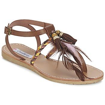 Chaussures Femme Sandales et Nu-pieds Coolway MELROSE Marron