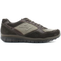 Baskets basses Igi&co 4727 Chaussures lacets Man