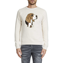 Vêtements Homme Pulls Maison Labiche Sweat Crew Neck Ml Beagle  Beige Chine Beige