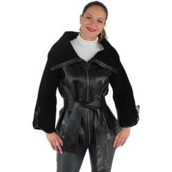 Vêtements Femme Blousons Pallas Cuir Blouson  sélection Nagoya en cuir ref_pst37556-noir noir