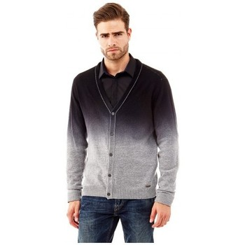 Vêtements Homme Gilets / Cardigans Guess Pull Cardigan Hector gris Gris