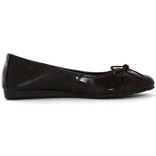 Chaussures Femme Ballerines / babies Toscania e72tosc002 marron